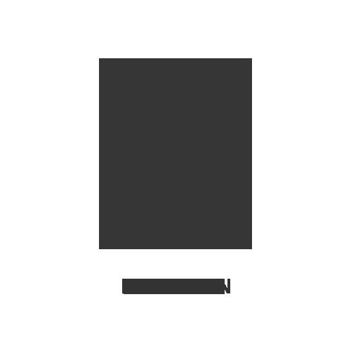 Porsche Leusden